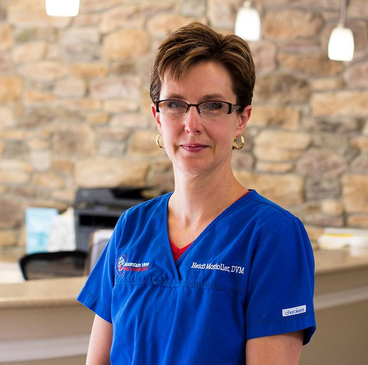 Dr. Heidi Mostoller